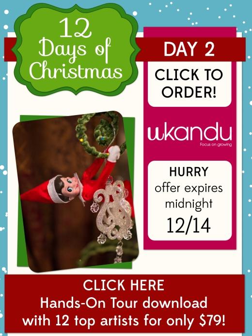 Day2_UkanduEblast_top_